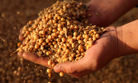 Huge Blow To US Farmers: China Heads To Argentina For Soy Meal In Landmark Deal