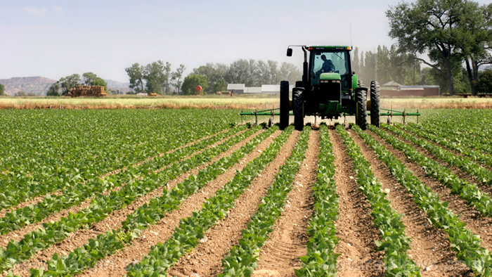 """Government now forcing tractor manufacturers to build them like smartphones so they can """"brick"""" themselves and become unusable – NaturalNews.com"""