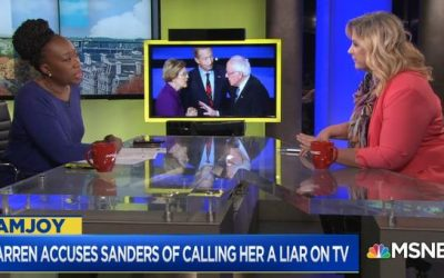 MSNBC Slammed For Featuring 'Body Language Expert' Who Calls Bernie Sanders A Liar
