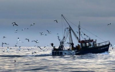 France Reportedly Open To Fisheries Compromise That Could Save Brexit Deal